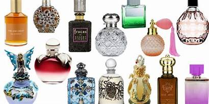 Fragrance Perfume Perfumes
