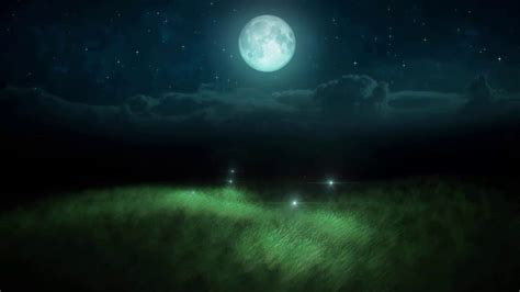 Animated Moon Wallpaper - fireflies at moon sky animated wallpaper