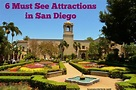 6 Must See Attractions in San Diego - A Spectacled Owl