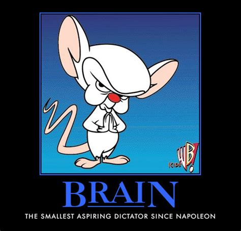 hitchlahougo pinky and the brain