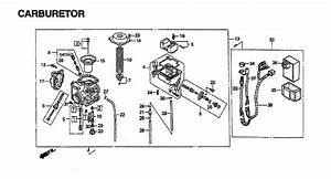 26 Honda Fourtrax 300 Rear End Diagram