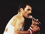 Who Infected Freddie Mercury - SEONegativo.com