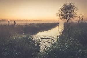 Wallpaper, Water, Reflection, Morning, Tree, Mist, Sky, Atmosphere, Sunrise, Wetland, Dawn