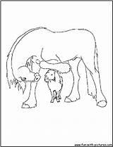 Clydesdale Coloring Horse Pages Fun Printable Drawings Getcolorings Getdrawings 1050px 24kb sketch template