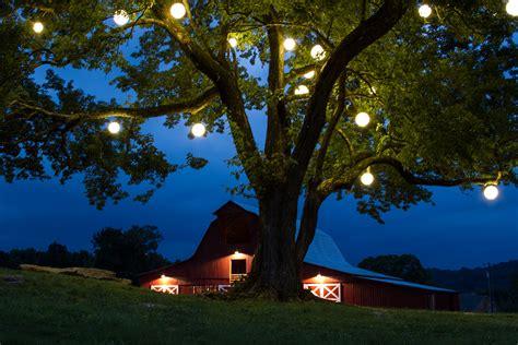 Pleasant Hill Christmas Tree Farm