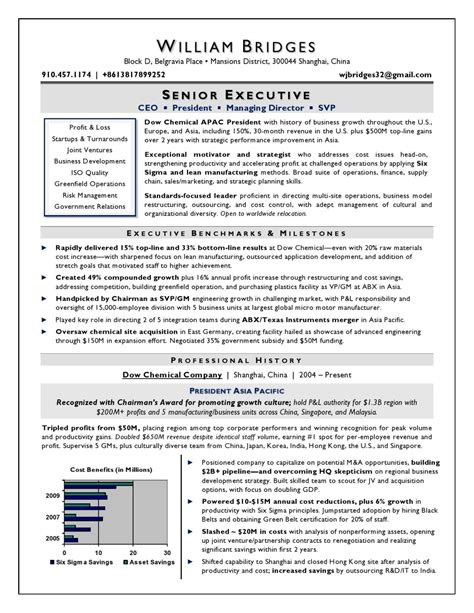 Ceo Resume by Ceo Sle Resume Award Winning Resume Writer Serving