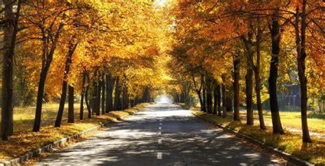 places   fall colors  las vegas safeguard