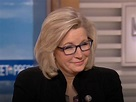 Liz Cheney: Democrats Have Become The Party Of Anti ...