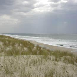 Dunes Et Marais : cr ation de la r serve naturelle nationale des dunes et marais d 39 hourtin en gironde ~ Maxctalentgroup.com Avis de Voitures