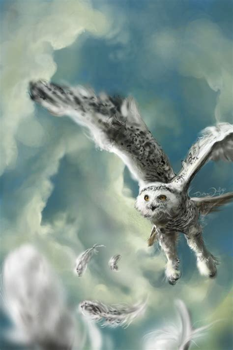 Harry Potter Wallpaper Hedwig Owl by 38 Best Images About Harry Potter Hedwig On