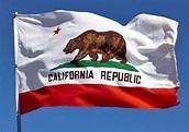California State Flags - Nylon & Polyester - 2' x 3' to 5 ...