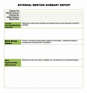 Sample meeting summary template 7 documents in pdf for Conference summary report template