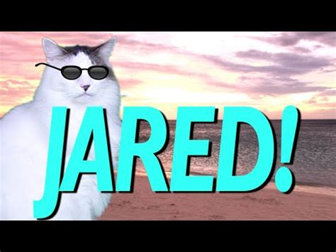 Happy Birthday Image by Happy Birthday Jared Epic Cat Happy Birthday Song