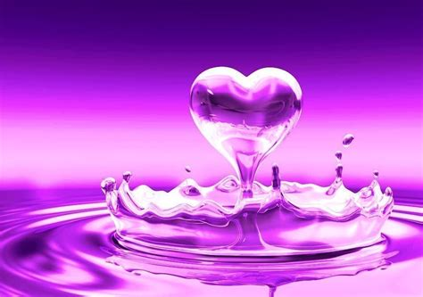 hd cool beautiful water purple purple purple water drop 186351