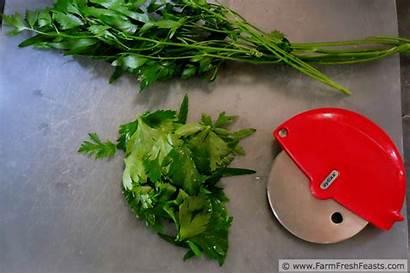 Pot Chopping Gifs Herb Herbs Fresh Tabbouleh