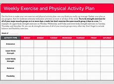 4+ Daily Exercise Planner Template SampleTemplatess