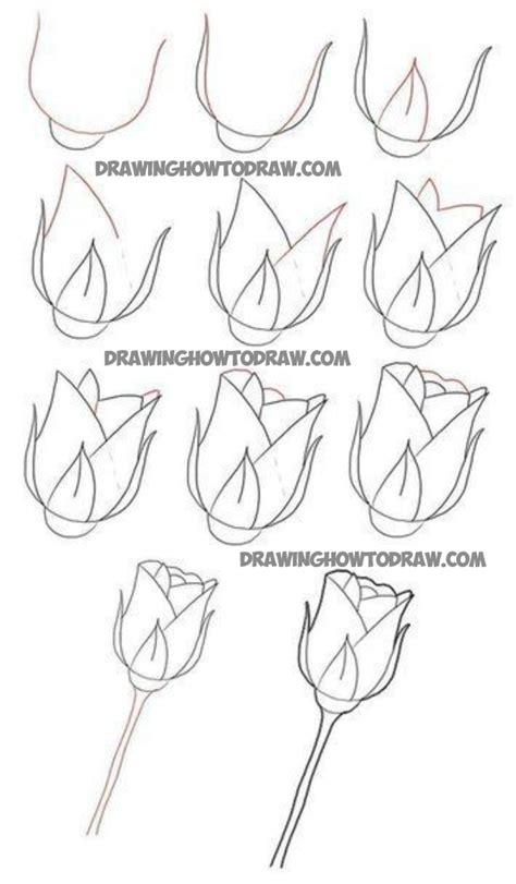 draw long stem roses drawing tutorial