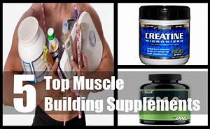 Five Top Muscle Building Supplements For You