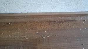Kalte Wände Was Tun : feuchte sockelleiste im erdgeschoss kein keller vorhanden ~ Lizthompson.info Haus und Dekorationen