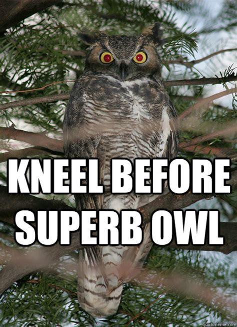 Owl Who Meme - superb owl memes quickmeme