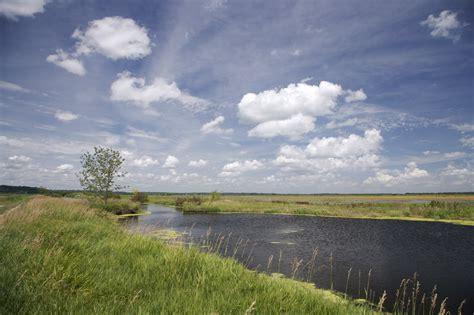 nature conservancy  environmental flows