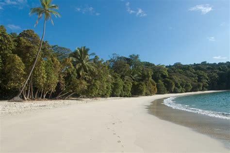going wild on the beaches of manuel antonio costa rica