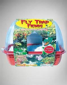 Fly Trap Friends