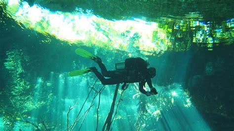 dive aventuras puerto aventuras mexico hours address