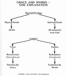 5  The Fall Of Man And His Redemption