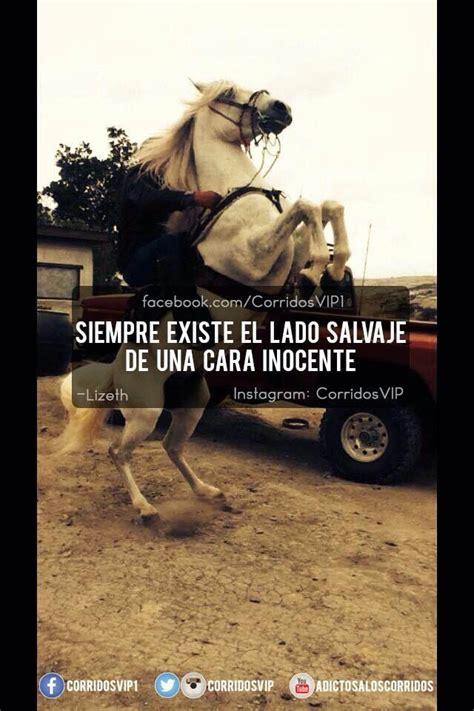 53 best Corridos vip images on Pinterest Frases en