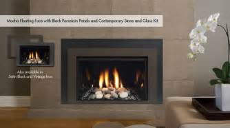 Gas Fireplace Insert Modern