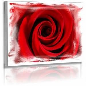 Abstrakte Bilder Online Kaufen : naturbilder blumenfotos blume rose abstrakte bilder ~ Bigdaddyawards.com Haus und Dekorationen