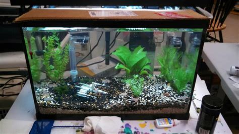 wars fish tank decorations my cichlids enjoy their quot dagobah system quot themed