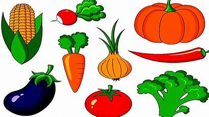 Vegetable Vegetables Names Fruits Clipart Clip Children