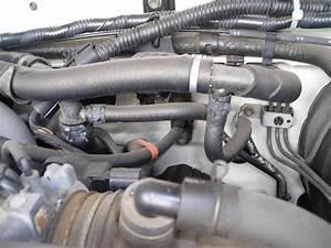 Toyota 3vze Engine Diagram Coolant