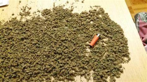 comprar marihuana en vigo – Venta de Marihuana y Hash ...