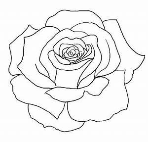 flower outline tattoos | Rose Outline Tattoo Stencil Line ...
