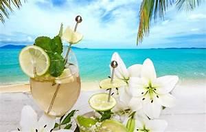 Wallpaper fruit, flowers, drink, drink, palms, beach ...