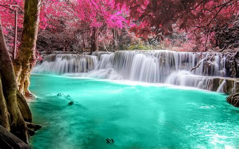 Waterfall Forest Colorful Nature Thailand Trees
