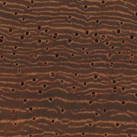 african padauk  wood  lumber identification