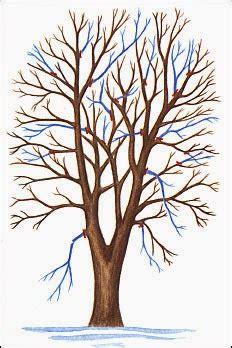 how to shape a maple tree cultivar el huerto casero consejos 250 tiles sobre la poda