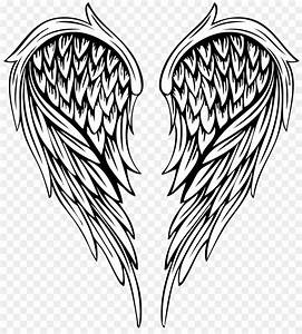 Feather Wings Drawing At Getdrawings