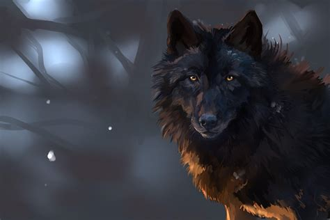 Black Wolf Wallpaper Laptop by Wolf Wallpapers Wallpaper Cave