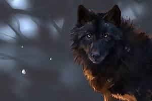 Dark Wolf Wallpapers - Wallpaper Cave