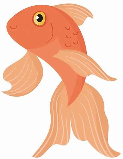 Fish Clipart Goldfish Carp Golden Nadando Transparent