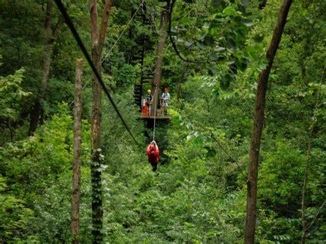 lake geneva canopy tours zip line canopy tour vs high ropes excursion lgct