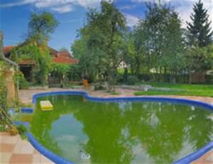 Poolwasser Ist Grün : gr nes poolwasser reinigen schwimmbad und saunen ~ Watch28wear.com Haus und Dekorationen