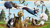 Watch Open Season 2 Online (2008) Full Movie Free - 9movies.Tv