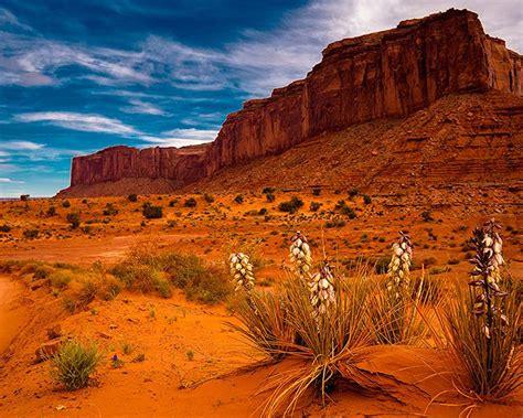 sedona arizona red desert area  rocks  sand usa