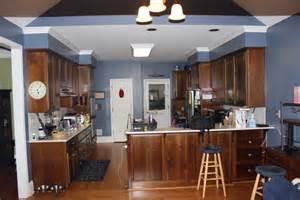 kitchen renovation platinum kitchens